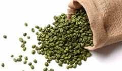 توزیع کافی میکس قهوه سبز